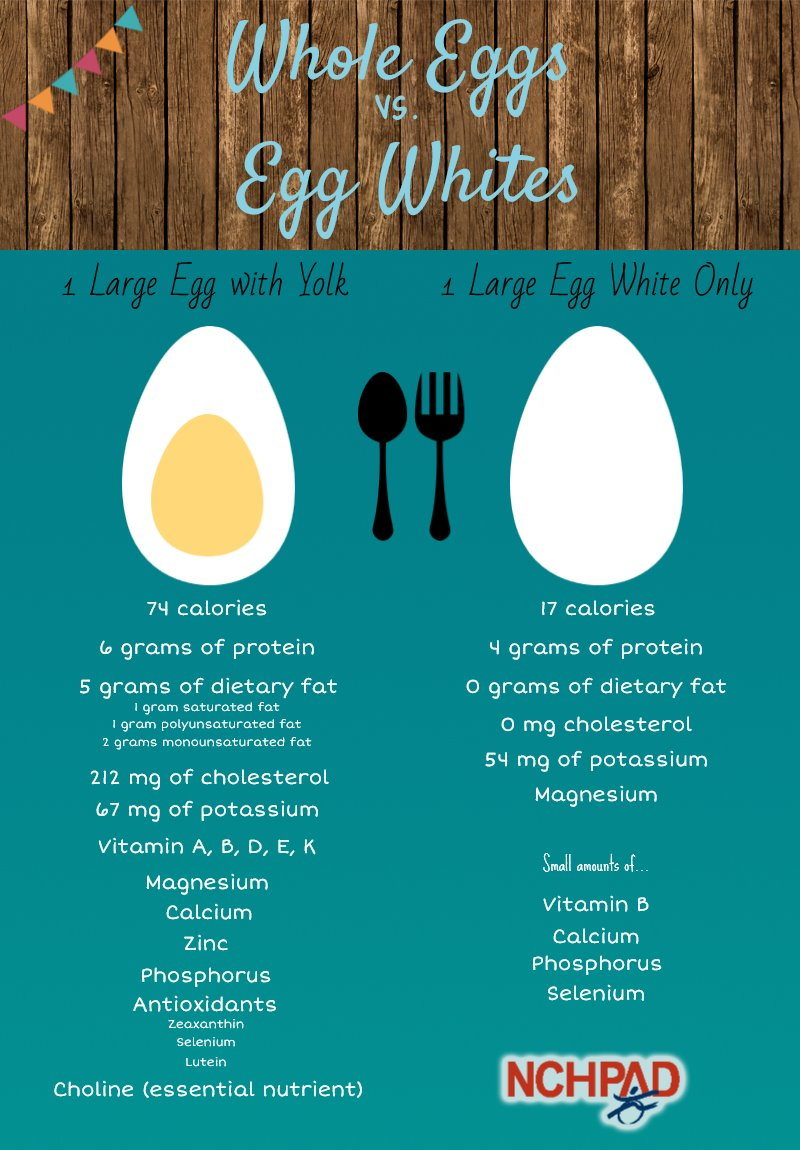 infographic depicting difference between whole egg and egg white only