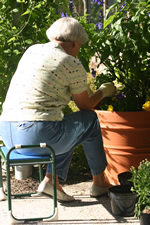 Woman tending tomatoes in a 24 inch high round planter while sitting on a small lightweight portable seat 18 inches wide and high with push handles to aid in standing.