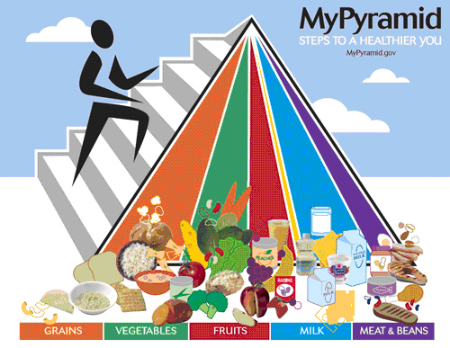Photo of Mypyramid Steps to a Healthier You